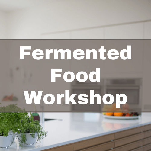 Fermented Food Workshop